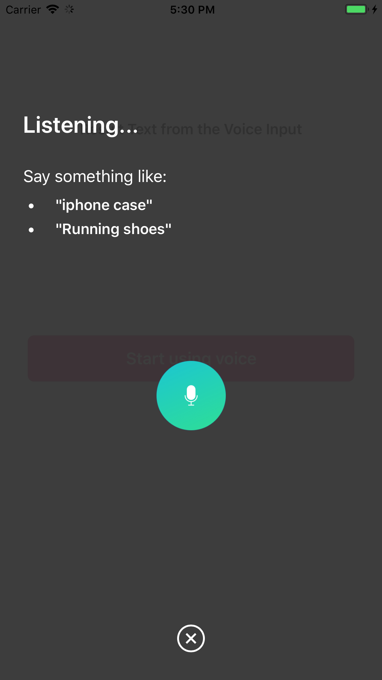 An overlay that gets your user's voice permission and input