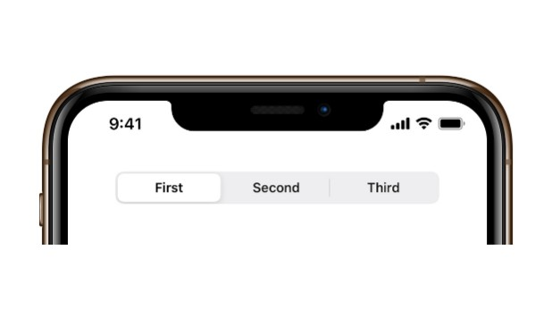 A segmented control in the style of iOS 13